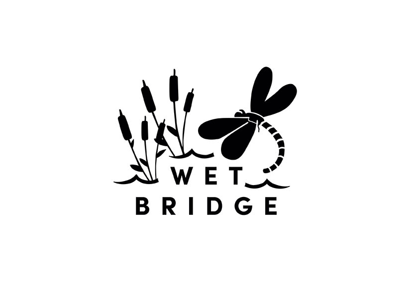 Wet Bridge